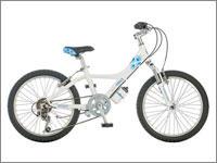 誕生日プレゼント 自転車